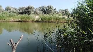 Рыбалка в Кучугурах...