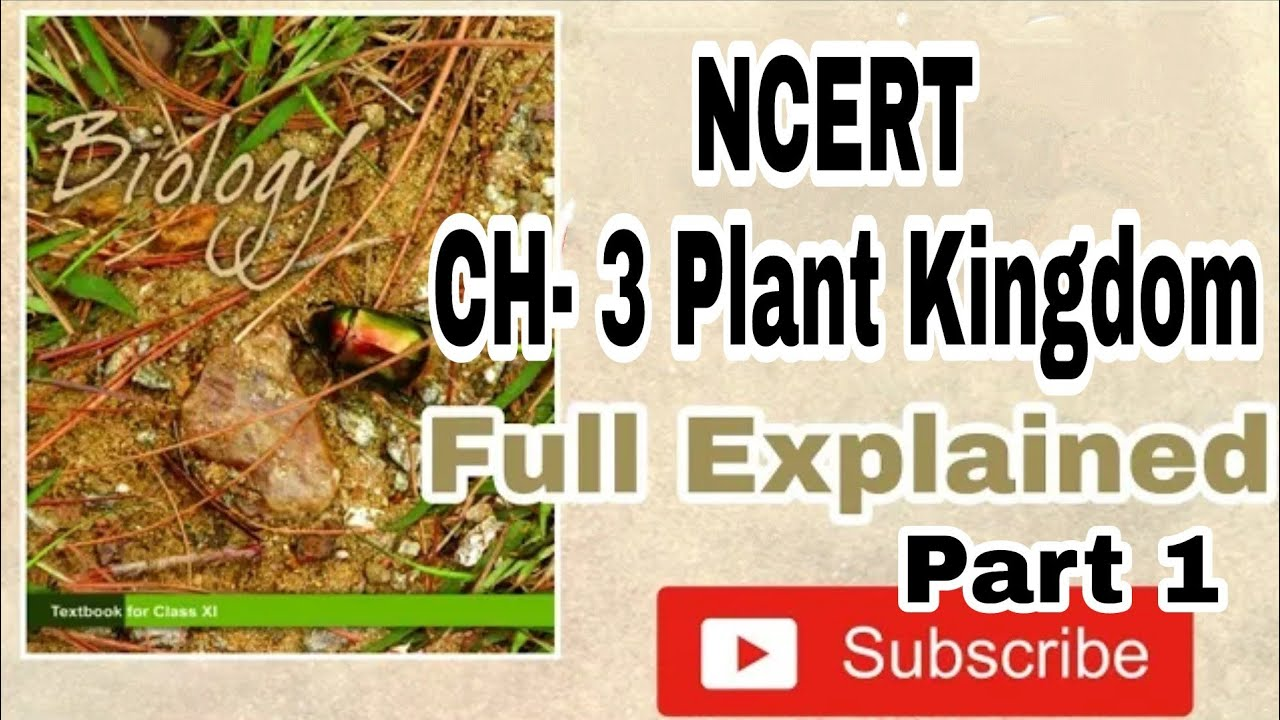 NCERT Chapter 3 The Plant Kingdom class 11 Biology Full Command For BOARDS  & NEET Part 1