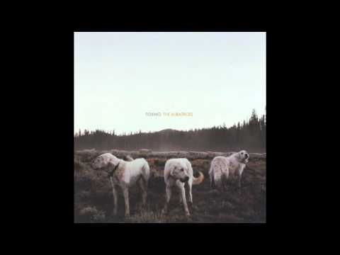 Foxing - The Albatross (Full Album)