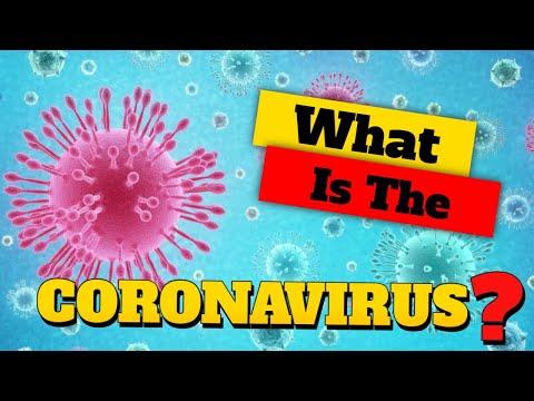 🛑 What Is The Coronavirus In Humans❓ - What Is Human Coronavirus 2019 Ncov❓