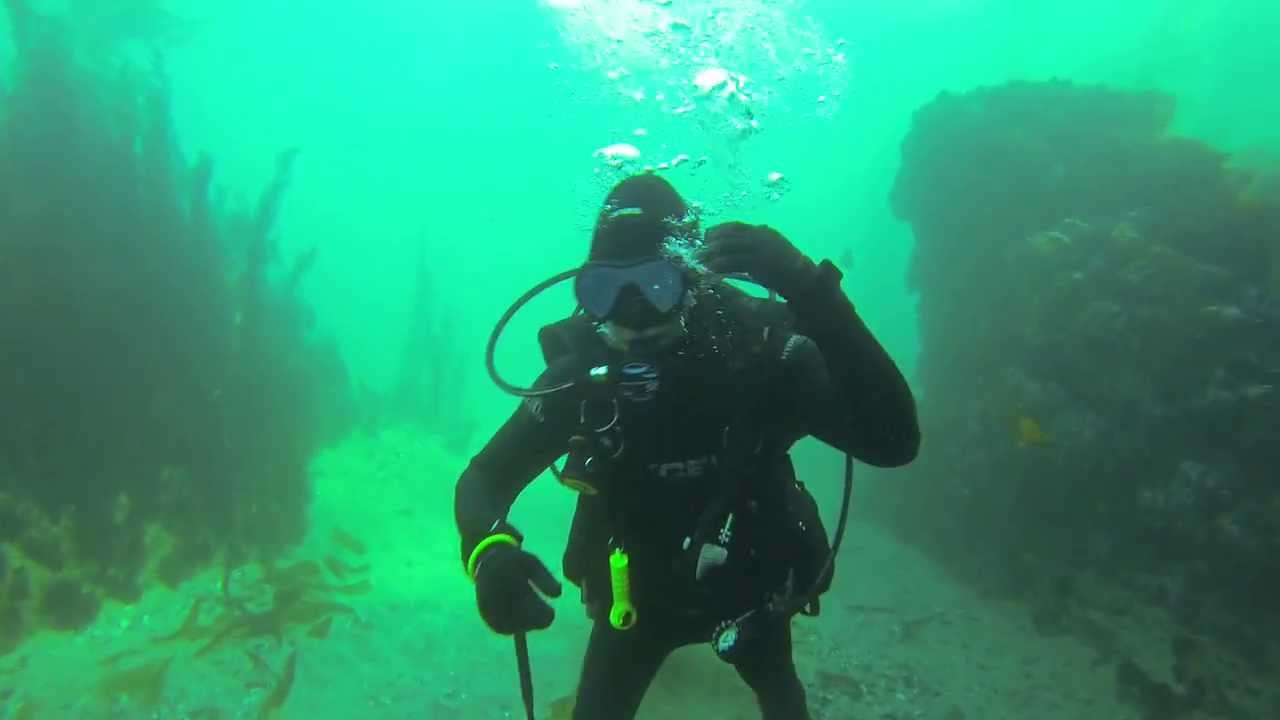 Close Call Scuba Diving In Southern California