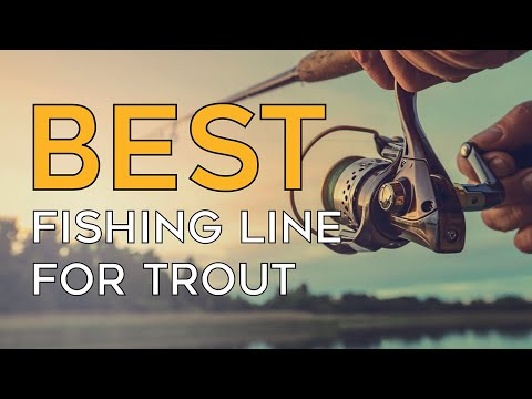 Best Fishing Line For Trout In 2020 – Quality Products With Miserable Price!