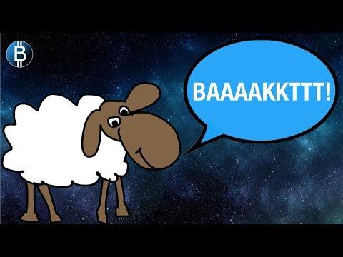 Bakkt Explained For Dummies! Will This Kick Start The Next Bitcoin BULL Market?