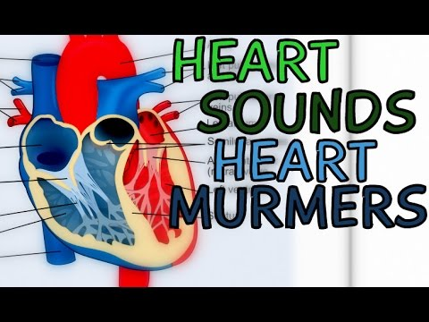 Heart Sounds and Heart Murmurs  Lub Dub