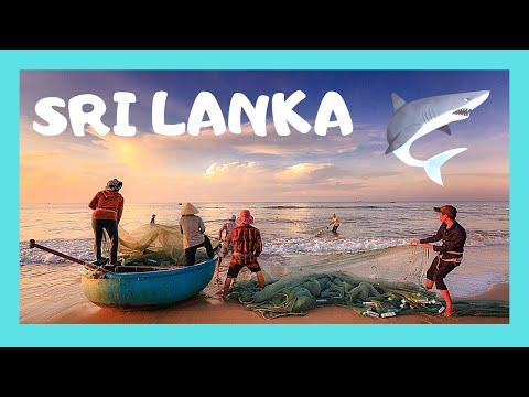 Sri lanka election 2015: Mavai Senathiraja meets press from YouTube · Duration:  3 minutes
