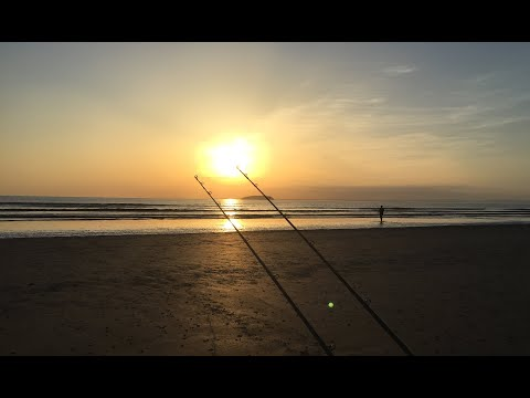 Sea Fishing The Bristol Channel Shore. Bass On A Stunning Evening. Brean Beach May 2020.
