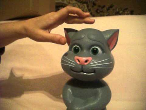 Инструкция для кота тома