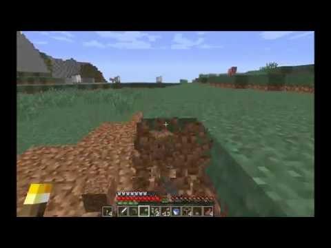 Minecraft CZ HD Let's Play E12 - Stavíme nový dům