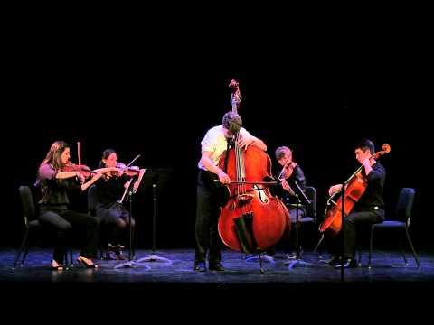 Vanhal Bass Concerto in D Major, Movement 1  Sean OHara