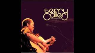 Terry Callier - When My Lady Danced (Live)