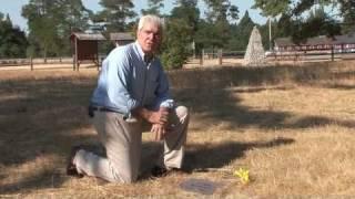 johnson county kentucky genealogy