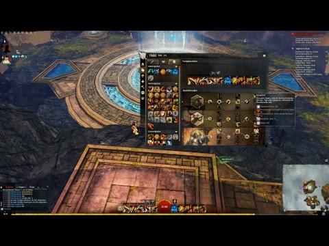 Guild Wars 2 - Leder und Farm