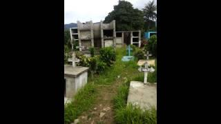 El cementerio abandonado de palmar grande Altamira