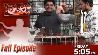 Doctor Ya Murgi Farosh | Mein Hoon Kaun | SAMAA TV | 03 Feb 2017