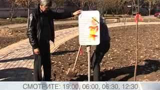 видео Анонс Acer Liquid Z5