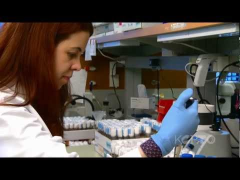 The Stowers Institute for Medical Research - The Local Show