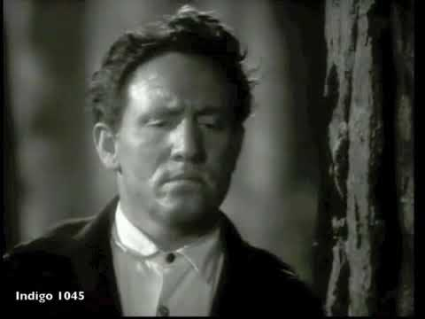 Saint Francis in The Wood - Frank Morgan, Spencer Tracy, Loving Dogs