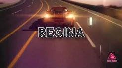 Tribute to the Wooden coaster Regina. 2000 - 2019