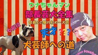 2018年1月19日枠より HISTORY&PARODY ウナちゃんマン【部長芸大全集】 ...