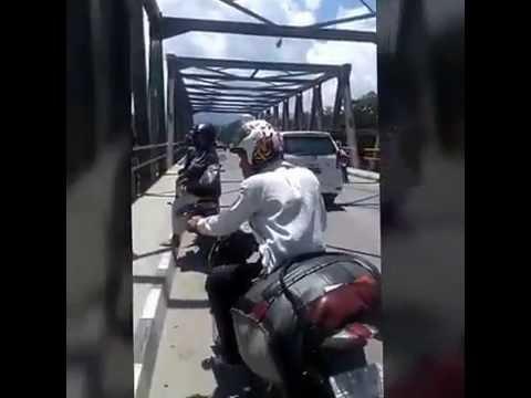 Penampakan Buaya Putih Di Jembatan
