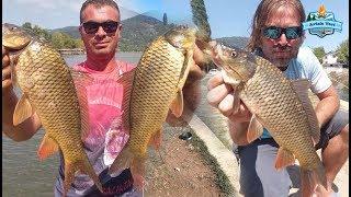 Sazan Avı Nasıl Yapılır? (Belgesel Tadında) / How to Catch Carp Fishing!!