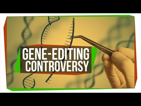 The First Gene-Edited Babies Are Here, Like It or Not | SciShow News