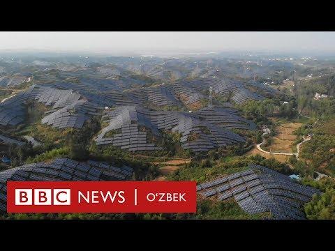 Қуёш батареяси фермаларини Хитой қанчалар тез ва кўп қураяпти? - BBC Uzbek