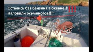 Остались без бензина в океане наловили осьминогов рыбалка в Атлантическом океане приколы на рыбалке