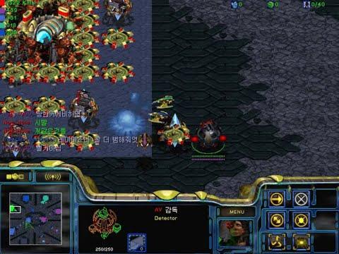 스타크래프트 유즈맵 AV 배우 블러드 StarCraft Use Map AV actress Blood