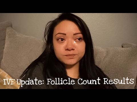 IVF Update   Egg Retrieval & Blastocyst Stage Results
