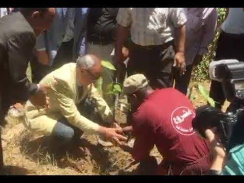 الوطن المصرية:محافظ قنا يطلق حملة المليون شجرة ضمن مبادرة السيسي
