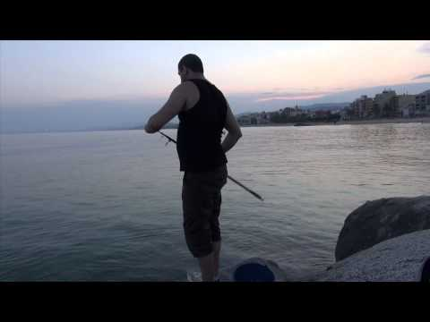 Fishing for Mullet Fish on Bread and Catching a Small Barracuda on a Realwobbler Fishing Lure