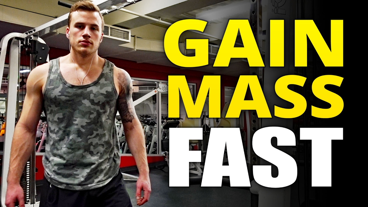 Download Ectomorph Diet | 6 Tips to Gain Mass Fast