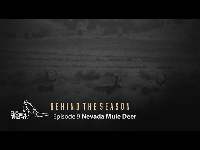 Nevada Mule Deer BTS