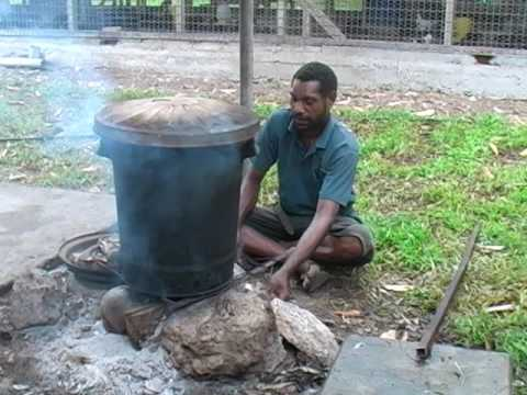 Increasing the Profitability of Village Broiler Chicken (Tok Pisin version) - PNG NARI