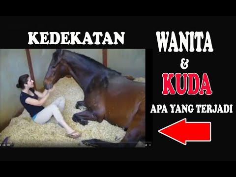 Cewe Cantik Vs Kuda jantan