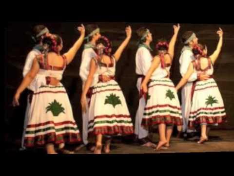 Picotas de Tamaulipas - Jacarandas