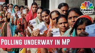 Polling Underway In MP: MP Assembly Elections: 230 Seats At Stake In MP Assembly Elections