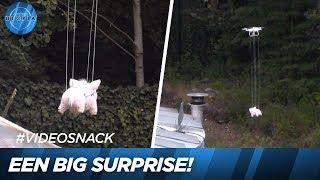 Een verrassing vanuit de lucht! 😲🚁   UTOPIA