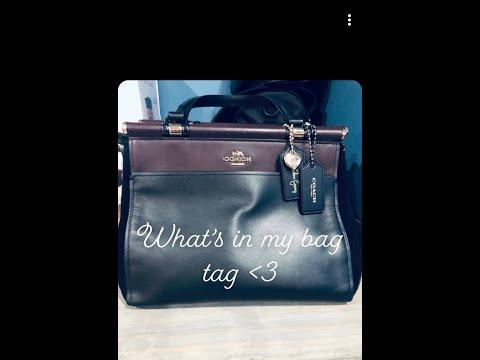 what's-in-my-bag:-selena-gomez-grace-bag