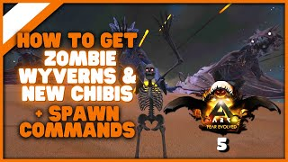 How To Tame Zoṁbie Wyverns Get The New Chibis And Fear Evolved 5 Spawn Codes The Witching Owl