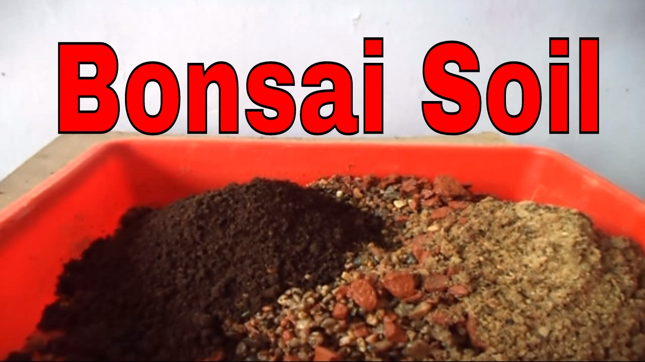 How to make bonsai soil for beginners bonsai soil tips for What is soil made out of