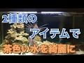 【アクアリウム】海水魚水槽の黄ばみを1日で綺麗にしてみた【海水魚水槽 】