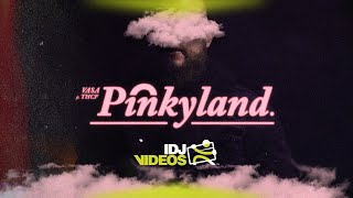 VASA X THCF - PINKY LAND (OFFICIAL VIDEO)