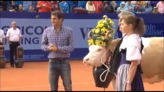Roger Federer's cow Desiree