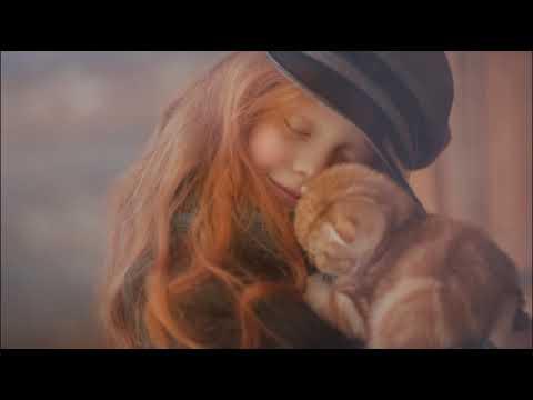 ЧТО ГОВОРИТ О КОШКЕ ЕЕ ОКРАС  Цвет кошки и характер Character of the cat by the color of the wool - Видео приколы ржачные до слез