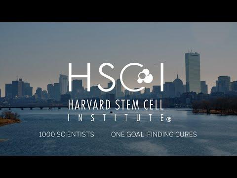 Harvard Stem Cell Institute: Breaking Boundaries To Cure Disease