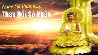 Nghe lời Phật Dạy Này Xong Cuộc Sống Bạn Thay Đổi May Mắn Đến Từng Ngày💰💰💰