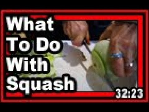 What To Do With Squash - Wisconsin Garden Video Blog 804