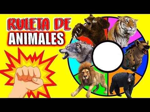 RULETA SORPRESA de ANIMALES SALVAJES   Depredadores de la Noche   León, Tigre, Oso, Lobo, Hiena